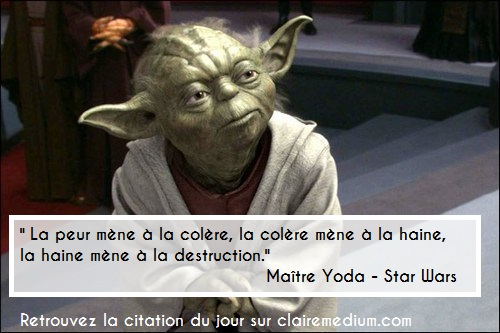 "... haine, la haine mène à la destruction."" Maître Yoda – Star Wars"