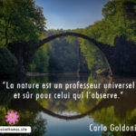 Citation de Carlo Goldoni