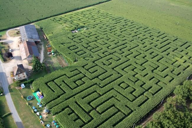 labyrinthe-clairemedium