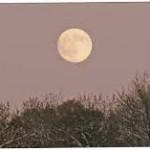 Calendrier lunaire décembre 2013