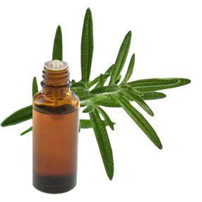romarin-huile-essentielle-clairemedium
