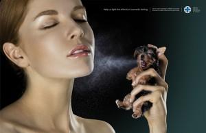 cosmétiques chien