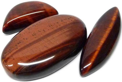 oeil-de-taureau-clairemedium
