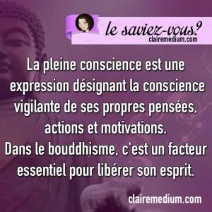 lesaviez-vous-Pleine-conscience-bouddhisme