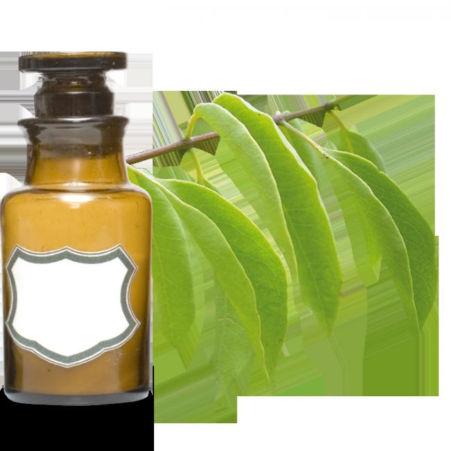 huile-essentielle-santal-amyris