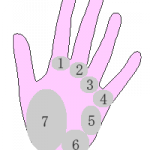 La chiromancie : les monts de main