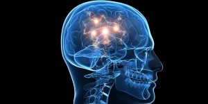 Comprendre le fonctionnement de notre cerveau: le défi est révolutionnaire