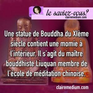 saviez-vous-momie-bouddha-statue