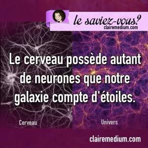 saviez-vous-neurones-etoiles