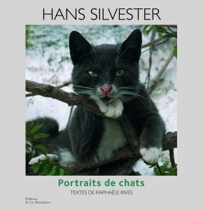 chats hans silvester