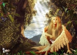 Anges Chérubins - clairemedium