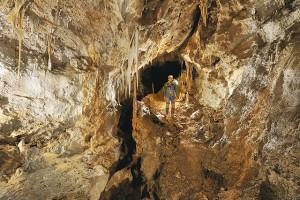 Réseau de Bufo Fret, la galerie des Intraterrestres (Bugarach,