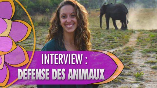 Interview de Claire Bottier sur la défense des animaux
