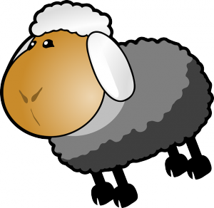 sheep-306451_640