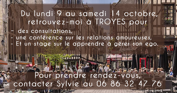 troyes-banniere