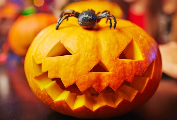 halloween-clairemedium