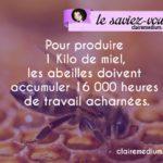 Pour une abeille, combien de temps faut-il pour produire un kilo de miel ?