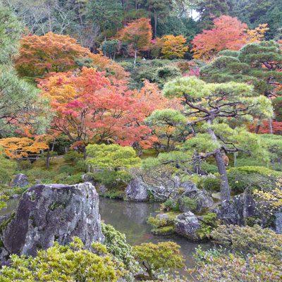 7 lever: Le Japon
