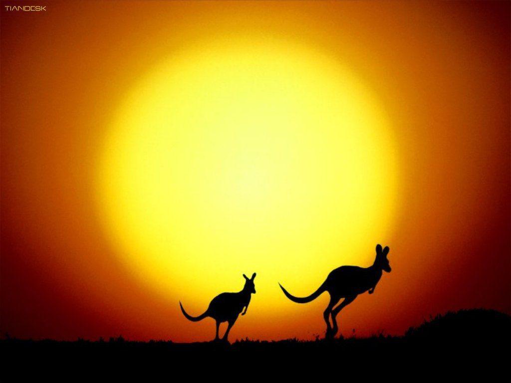 Interprétation du rêve de Marie : La souris, le rat et le kangourou