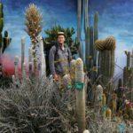 « Le Jardin du Monde » de l'horticulteur Thomas Hart Dyke