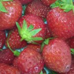 Recette : fraises