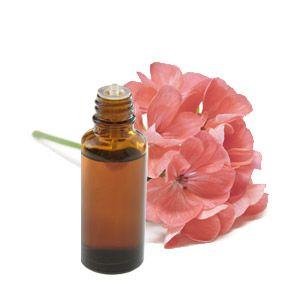 Huiles essentielles : géranium rosat