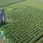 Rêves : rêver de labyrinthe