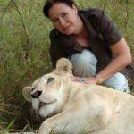 Linda Tucker : une femme de cœur au secours des lions blancs