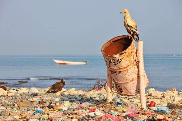Notre planète : Le 6è continent, le cauchemar des océans