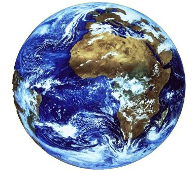 Notre planète : les grands chiffres de la biodiversité