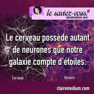 Le saviez-vous ? Etoiles et neurones