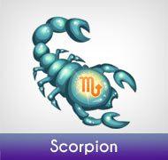 Scorpion mars 2013