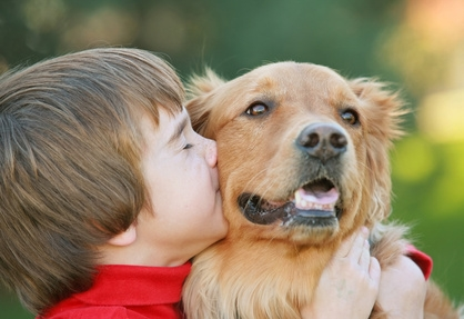7lever : La zoothérapie