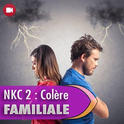 """<span itemprop=""""name"""">NKC 2 : colère au sein de la famille</span>"""