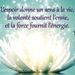 Citation de la semaine de Yves M