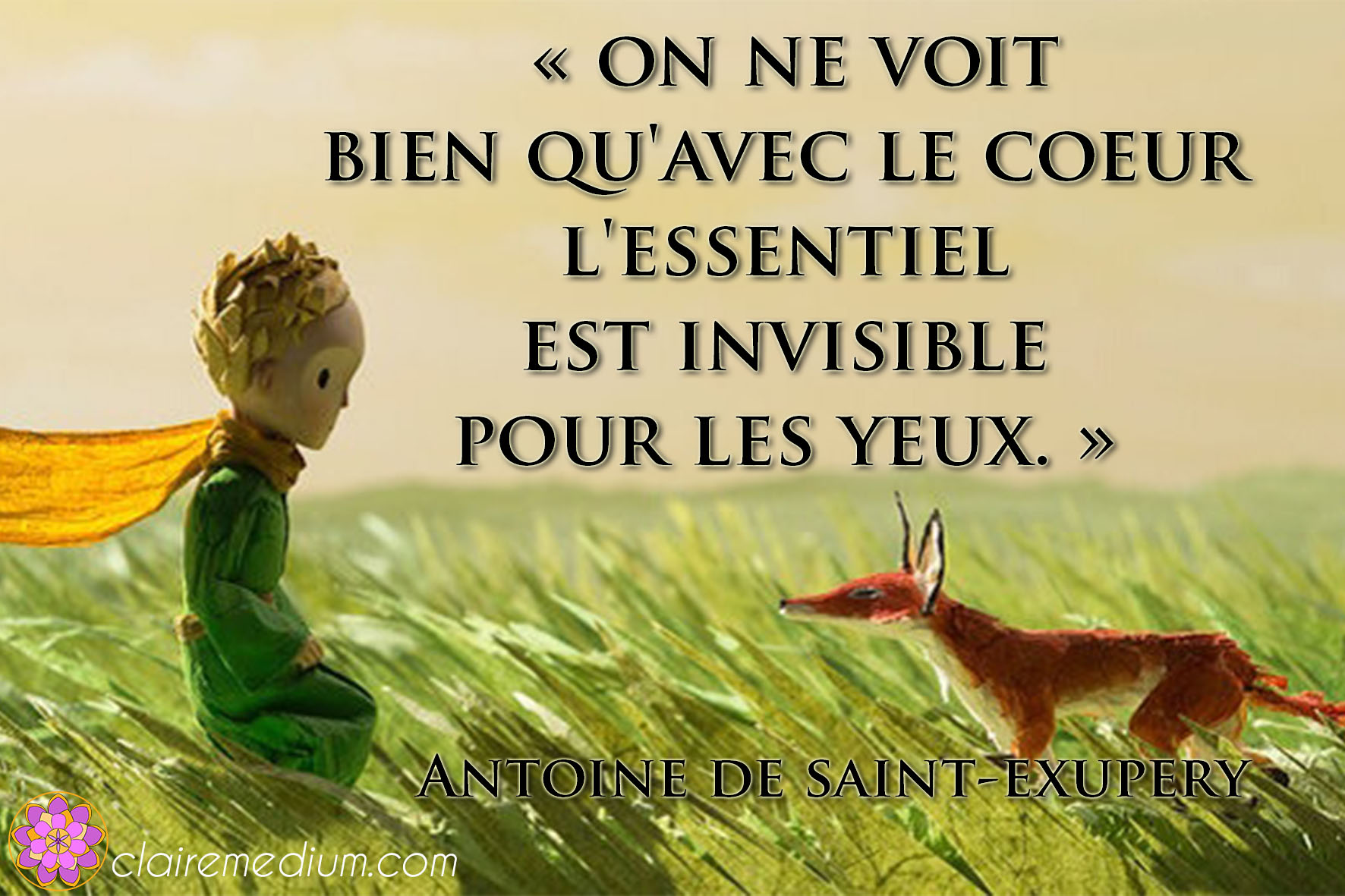 Citation de la semaine : Antoine de Saint-Exupéry