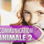 La communication animale 2 : vos questions