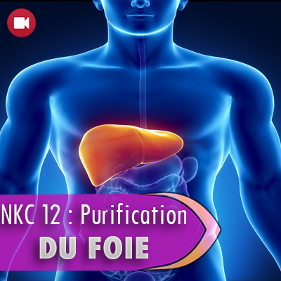 "<span itemprop=""name"">NKC 12 : Purification du foie</span>"