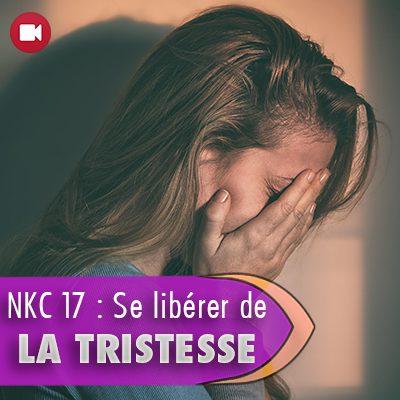 """<span itemprop=""""name"""">NKC 17 : Se libérer de la tristesse</span>"""
