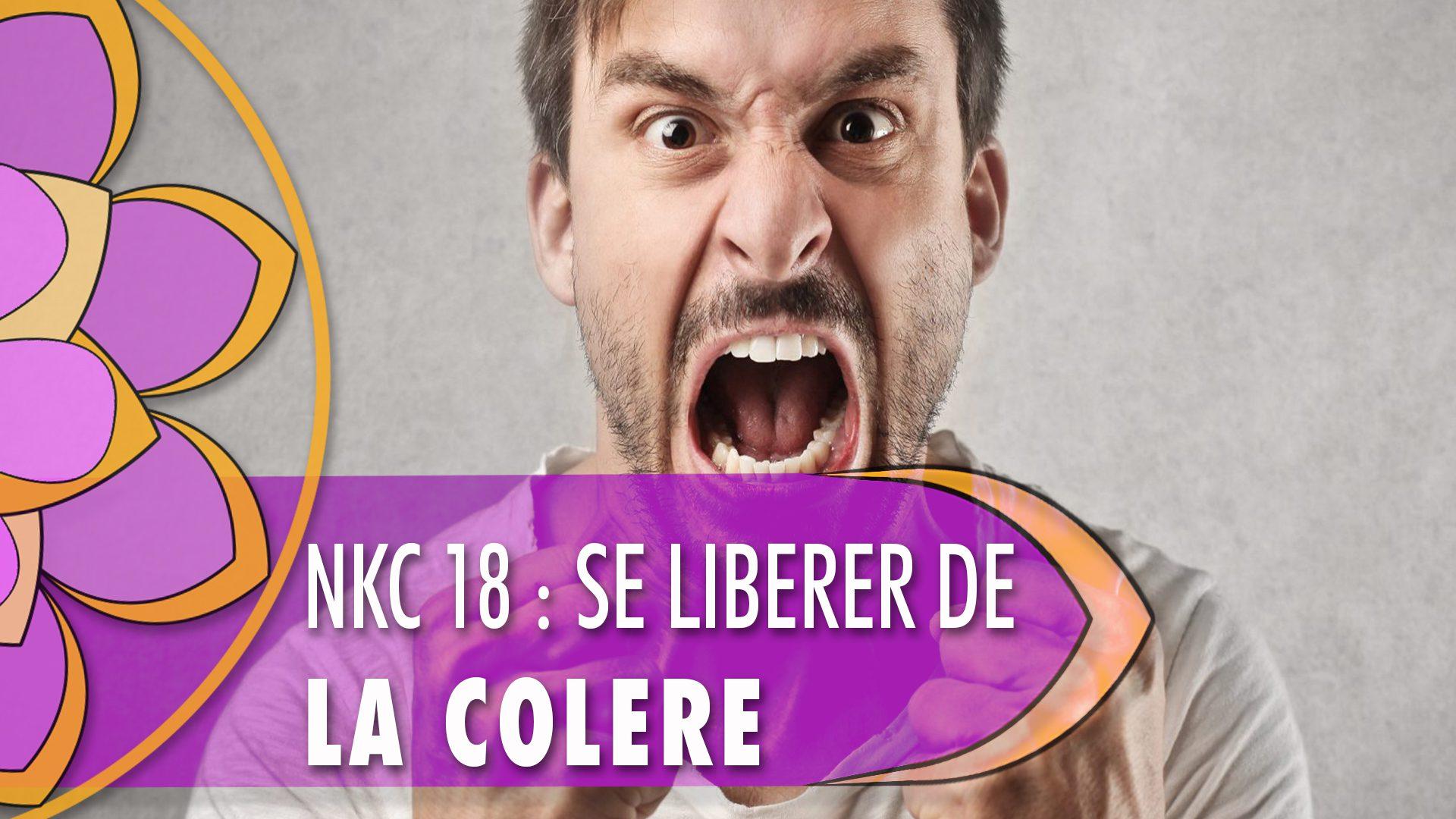 """<span itemprop=""""name"""">NKC 18 : Se libérer de la colère</span>"""